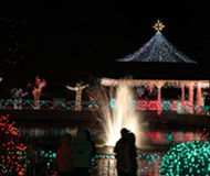 Christmas lights Rhema Bible Church